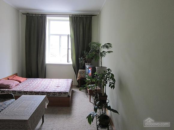 Apartment near Opera theatre, Studio (88168), 005