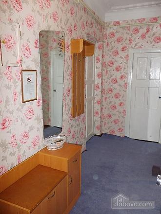 Apartment near Sevastopolska square, Un chambre (81295), 015