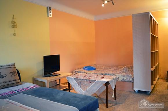 Studio apartment on Pechersk, Studio (65811), 003