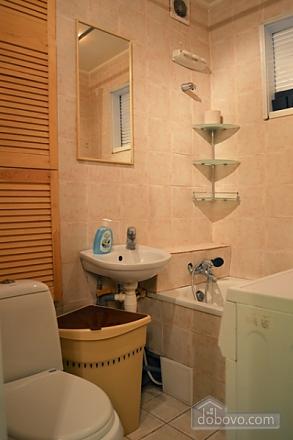 Studio apartment on Pechersk, Studio (65811), 005