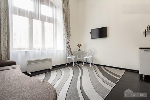 Мила квартира-студія, 1-кімнатна (19356), 002