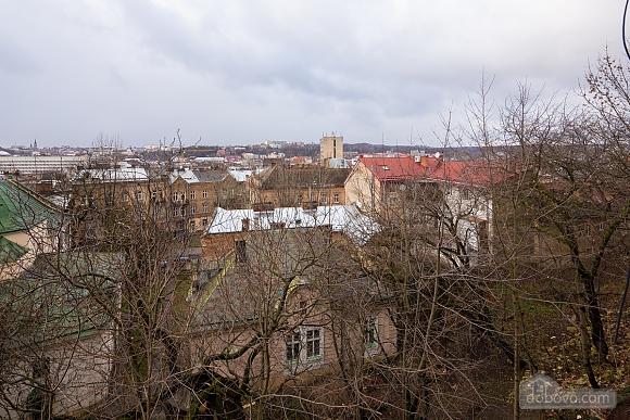 Apartment in the center of Lviv, Studio (75017), 017
