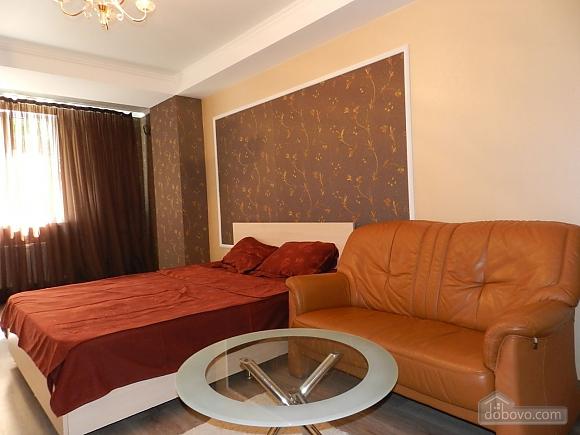 Cosy apartment in the centre of Chisinau, Studio (46536), 002