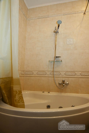 Apartment in the center of Kharkov, One Bedroom (65461), 004