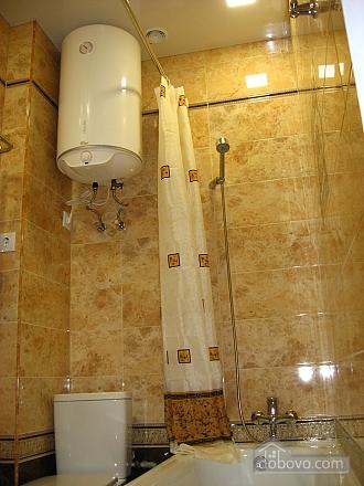 Апартаменты возле метро Гагарина, 1-комнатная (94615), 008