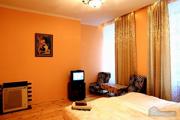 Apartment in the center, Monolocale (65411), 001