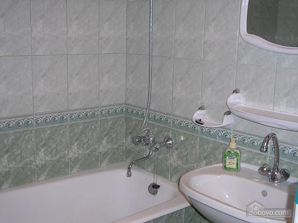 Spacious apartment, Un chambre (79928), 008