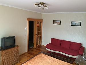 Cosy apartment near to Poznyaky, Studio, 002
