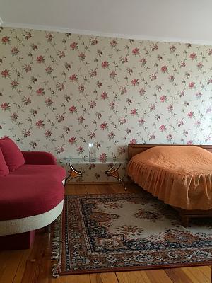 Cosy apartment near to Poznyaky, Studio, 004