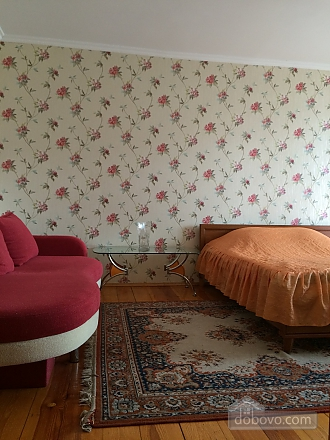 Cosy apartment near to Poznyaky, Monolocale (93667), 004