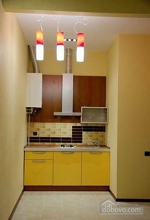 Apartment in the city center of Lviv, Monolocale (58551), 002