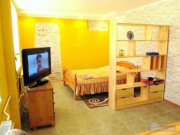 Комфортабельная квартира в самом центре города, 1-комнатная (60012), 002