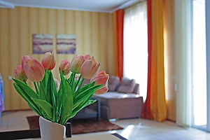 Lux apartments near the sea in the сentre of Odessa, Due Camere, 001