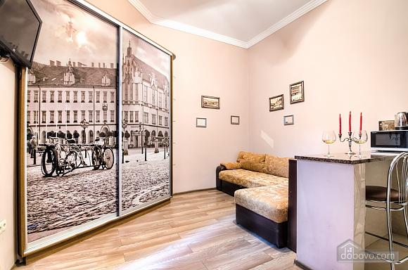 Apartment in Lviv, Studio (63913), 001