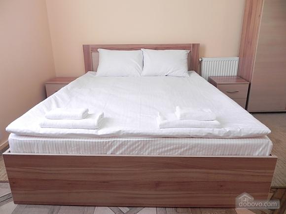 Квартира біля Оперного театру, 2-кімнатна (81182), 010