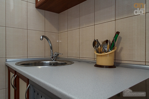 Люкс апартаменты в самом центре Запорожья, 2х-комнатная (91891), 014