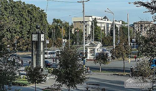 Люкс апартаменты в самом центре Запорожья, 2х-комнатная (91891), 041