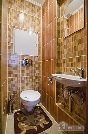 Apartment in the center of Lviv, Un chambre (27214), 012