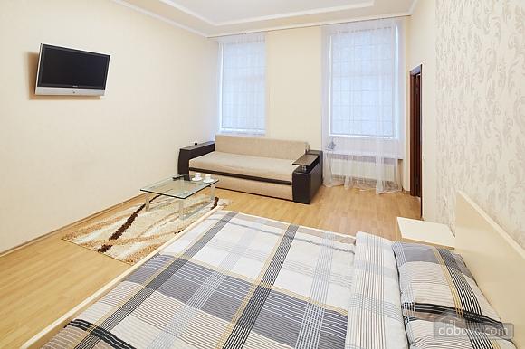 Просторная и светлая квартира, 1-комнатная (10429), 002