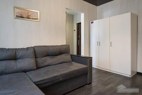 Apartment after a renovation, Monolocale (92256), 002