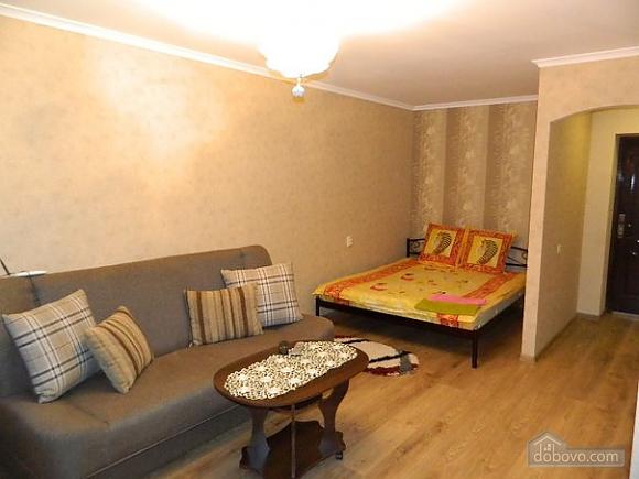Comfortable apartment in a convenient location, Monolocale (17835), 001