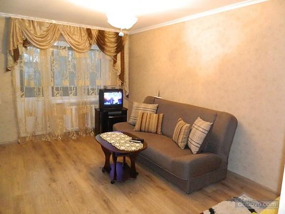 Comfortable apartment in a convenient location, Monolocale (17835), 002