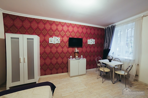Wonderful apartment in the centre of Lviv, Monolocale (89022), 001
