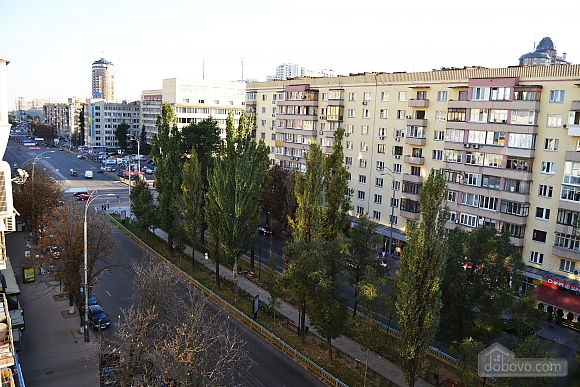 Business class apartment in Pechersk, One Bedroom (77004), 002