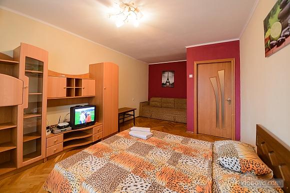 Cosy apartment near Bessarabska square, Monolocale (94513), 001