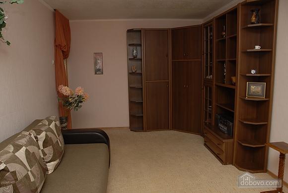 Apartment near the source, Studio (78001), 003