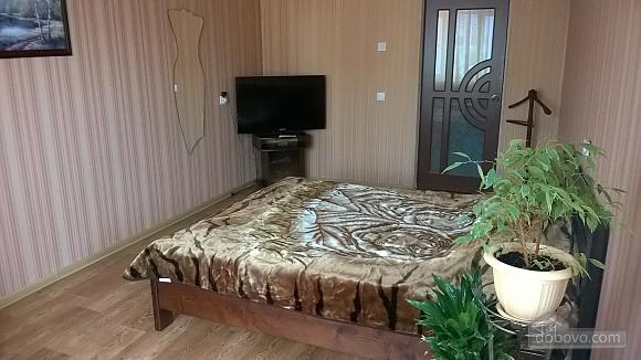 Apartment near Berezova roscha, Monolocale (63129), 002