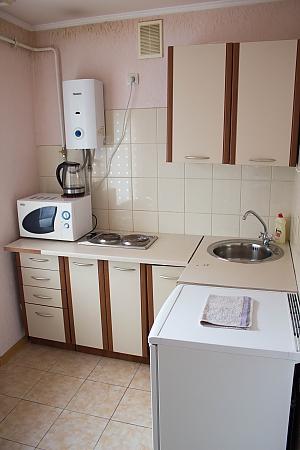 Теплі апартаменти в центрі, 1-кімнатна, 003