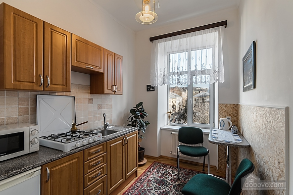 Apartment in the center of Lviv, Studio (74996), 002