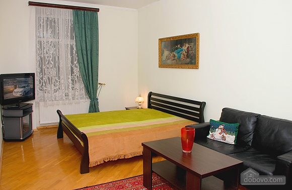 Apartment in the center of Lviv, Studio (74996), 001
