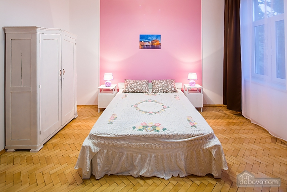 Apartment in the center of Lviv, Studio (58876), 003