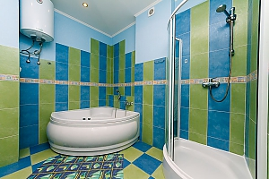 Apartment with jacuzzi on Khreschatyk, One Bedroom, 010
