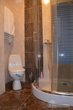 Elite apartment in the center of Lviv, Un chambre (66479), 008