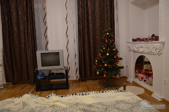 Elite apartment in the center of Lviv, Un chambre (66479), 010