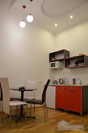 Elite apartment in the center of Lviv, One Bedroom (66479), 005