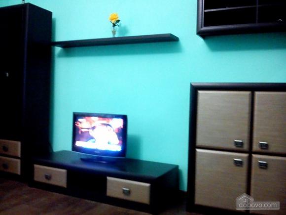 Spacious apartment in front of Stargorod, Una Camera (51733), 002
