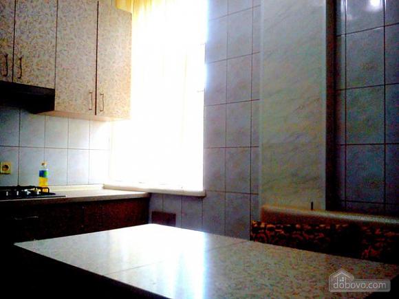 Spacious apartment in front of Stargorod, Una Camera (51733), 004