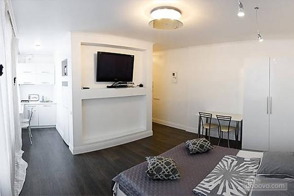 Lovely studio apartment in Pechersk, Studio (33035), 010
