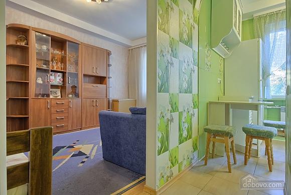 Cosy apartment near  to Druzhby Narodiv station, Studio (18005), 004