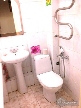 Apartment with excellent location in the centre of Kiev, Studio (10453), 011