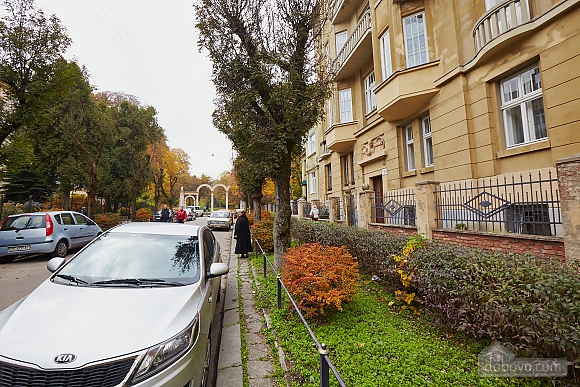 Historical apartment near to swans lake, One Bedroom (70280), 008