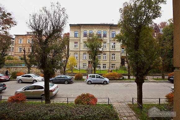 Historical apartment near to swans lake, One Bedroom (70280), 009