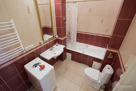 Historical apartment near to swans lake, One Bedroom (70280), 011