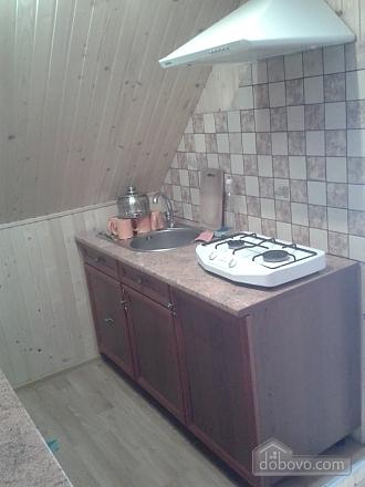 Chertyzh, Zweizimmerwohnung (53301), 010