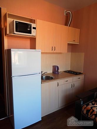 Уютная квартира-студио в центре, 1-комнатная (18163), 003