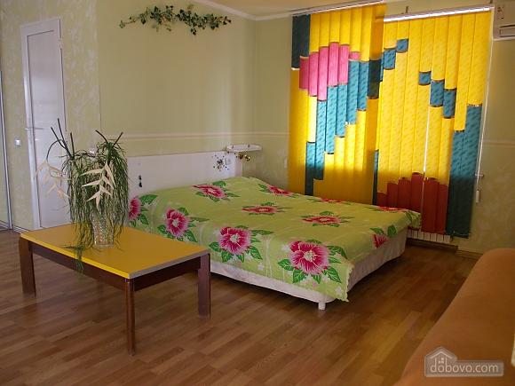 Studio apartment in the heart of the city in the elite valtura, Studio (22731), 008
